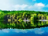Riflessione di foresta verde nell'acqua del lago blu — Foto Stock