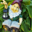 Fanny garden gnome reading a book — Stock Photo #34215375