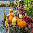 Colorful pumpkins arrangement on handcart — Stock Photo
