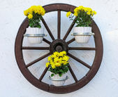 Carriage wheel decorated with flowers — Photo