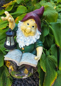 Fanny garden gnome reading a book — Stock Photo