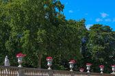Famous Jardins Luxembourg, Paris — ストック写真