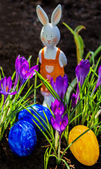 Uova di pasqua e il coniglietto di pasqua in un giardino — Foto Stock