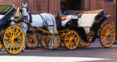 Horst drawn carriage — Stock Photo