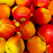 Red and yellow Topaz apples — Stock Photo #41783985
