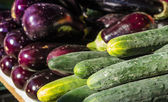Fresh cucumbers and eggplants — Stock Photo