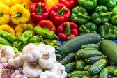 Colorful vegetables arrangement — Stock Photo