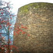 Remains of the Roman city wall in Cologne — Stock Photo