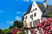 City of Roses Eltville am Rhein, the biggest town in the Rheingau, Germany — Stock Photo