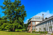 The Big Greenhouse in Kassel in Castle Park, North Hesse, Germany — Stock Photo