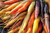 Zanahoria amarilla, naranja y Lila — Foto de Stock