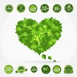 Eco set: healthy life — Stock Vector #35721821