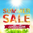 Summer Sale collection — Stock Vector #49065787
