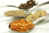 Spices and flavorings — Stock Photo
