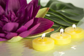 Candles and water lily — Stock Photo