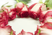 Roses in a circle — Stock Photo
