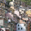 View of Riomaggiore — Stock Photo