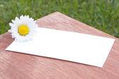 Tarjeta blanca con flores — Foto de Stock