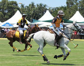 Polo Players and Horses — Stock Photo