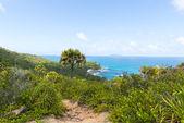 Tropisk strand på seychellerna - semester bakgrund — Stockfoto