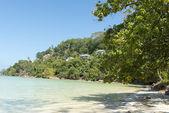 Playa tropical en seychelles - fondo de vacaciones — Foto de Stock