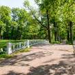 Stock Photo: Catherine park. Pushkin. Russia