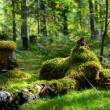 Russia. Nature and the forest. Various forest landscape — Stock Photo