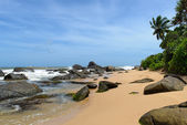 Sri Lanka. West Coast. The coastline of beaches. — Stock Photo