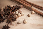 Cinnamon, Cardamon, Star Anise — Stock Photo