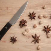 Cardamon and Star Anise — Stock Photo