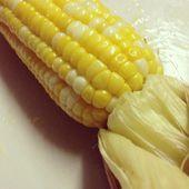 Baked Corn — Stock Photo