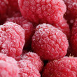 Raspberry frost macro - Stock Photo