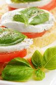 Caprese sandwiches avec mozzarella — Photo