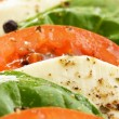 Salad caprese — Stock Photo #27475313