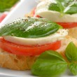 Caprese sandwiches with mozzarella — Stock Photo