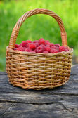 Raspberries in the basket — Stock Photo