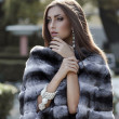 Fashion model posing in a fur coat - Stock Photo