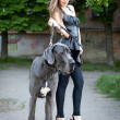 Beautiful woman with a large dog — Stock Photo