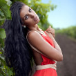 Beautiful girl in vineyard — Stock Photo