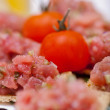Appetizer with tomato  — Stock Photo
