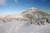 Mountain top in winter — Stock Photo