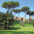 Palatine Hill in Rome — Foto Stock