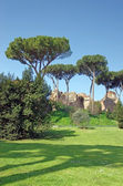 Palatine Hill in Rome — Stock Photo