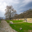 Neamt fortress ruins — Stock Photo #46596007