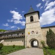 Secu monastery surrounding walls — Stock Photo #46596143