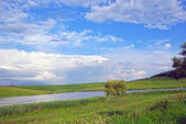 Lake and meadow — Stock Photo