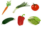 Set of vegetables isolated on white background — Stock Vector