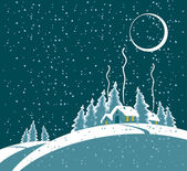 Winter night — Stock Vector