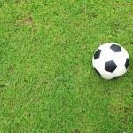 Soccer ball on green grass — Stock Photo #32419159
