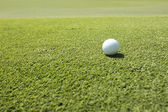 White Golf ball on green grass left side background — Stock Photo
